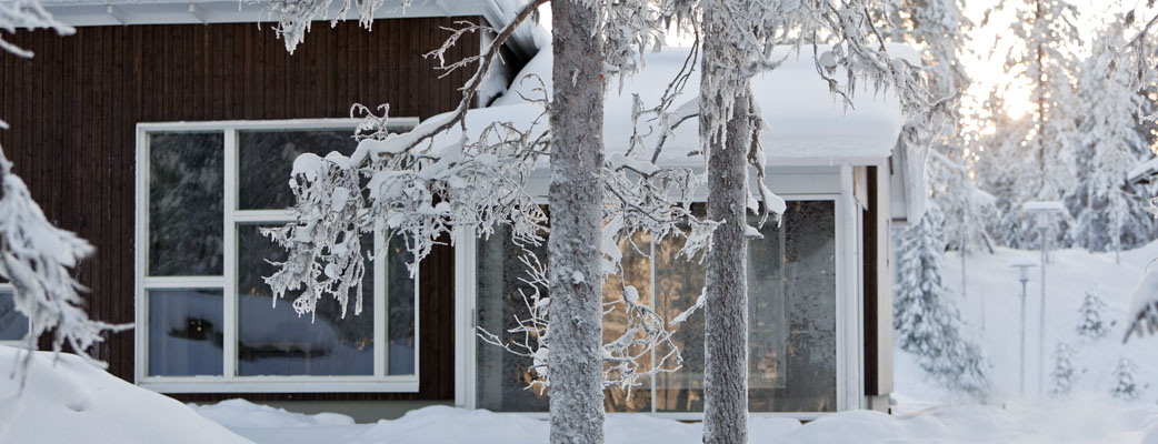 The Kuusamon Tropiikki Villas holiday houses are surrounded by a beautiful forest landscape.