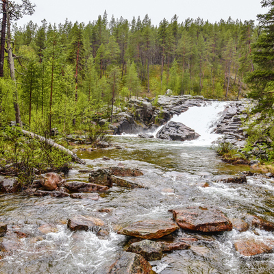 Summer Holiday in Finland