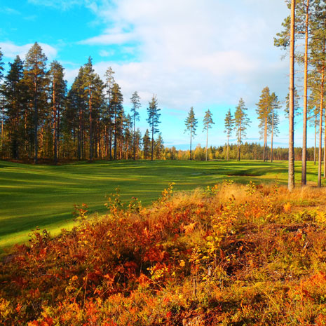 golf-course-autumn-squ.jpg