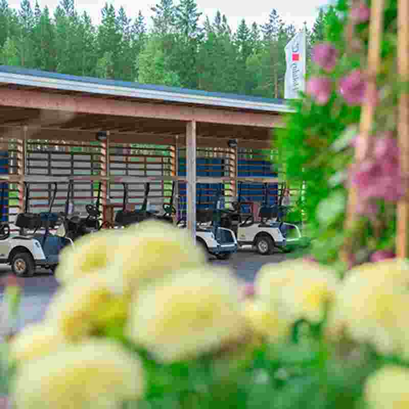 Saimaa_golf_cars_squ.jpg