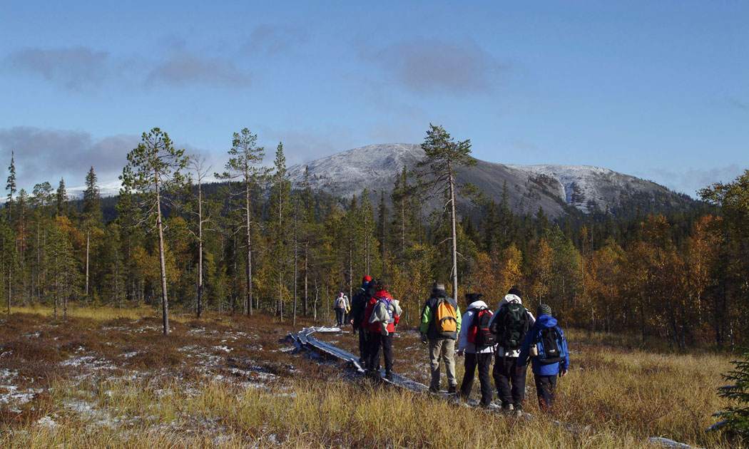 Ylläs-hiking-mountain-hor.jpg