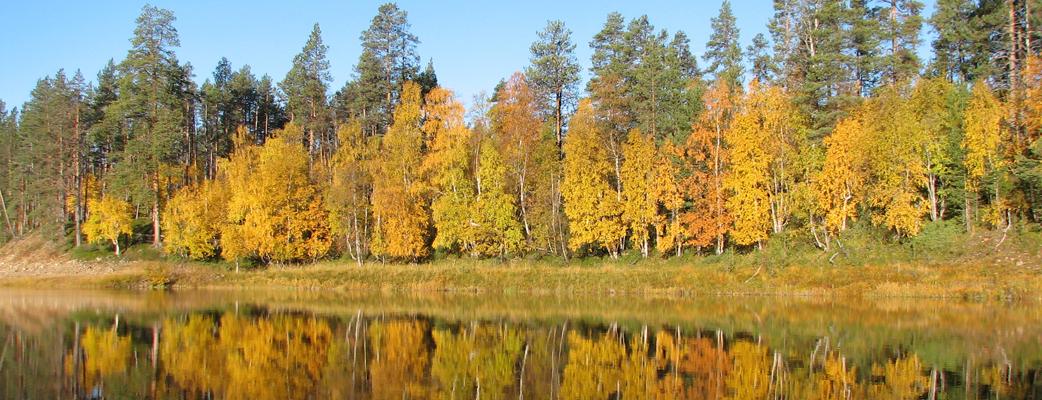Ruskan upeat värit loistavat kauniisti järven pinnasta.
